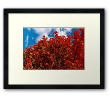 A red view on a fall day (you burn in me) Framed Print