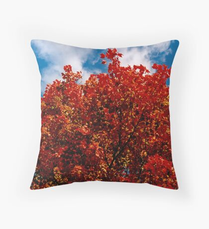 A red view on a fall day (you burn in me) Throw Pillow