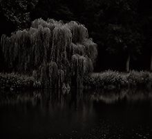 Willow whisper your sorrows to this river of tears by clickinhistory