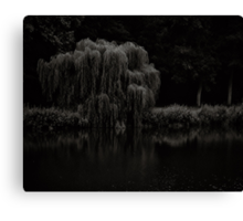 Willow whisper your sorrows to this river of tears Canvas Print