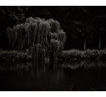 Willow whisper your sorrows to this river of tears Photographic Print
