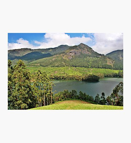 The beautiful landscapes of Munnar. Photographic Print