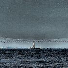 Verrazano by djphoto