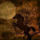 Moonlit Dance by Katy Breen