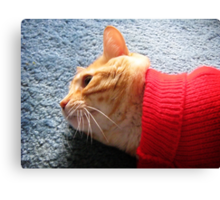 Red Sweater Canvas Print