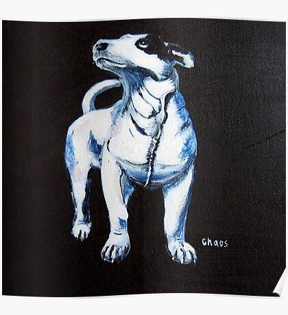 Chaos, Bull Terrier Poster