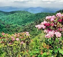 Blue Ridge Parkway by rok-e