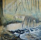 Stepping into Spring, Rivelin Valley by Sue Nichol