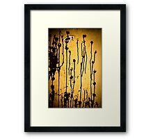 OnePhotoPerDay Series: 245 by L. Framed Print