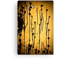 OnePhotoPerDay Series: 245 by L. Canvas Print