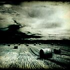 Field At Night by Ethem Kelleci
