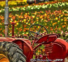 Tractor & Flowers by Frank Garciarubio