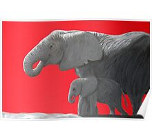 Elephants (for Zac) Poster