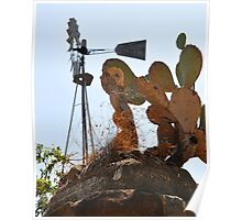 Windmill and Cactus near Pedernales Falls State Park Poster