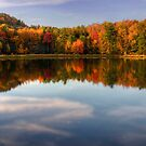 Autumn Shoreline Reflection by Gene Walls