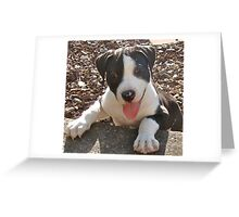 Hello, my name's Memphis. Greeting Card