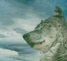 Arctic wolf by Gary Fernandez