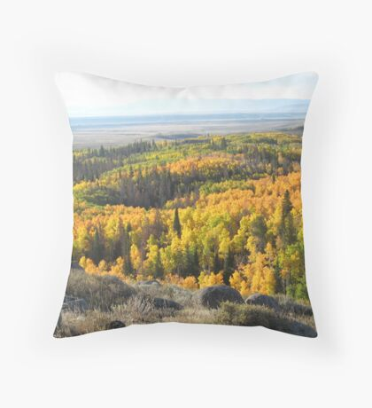Walden, CO Throw Pillow