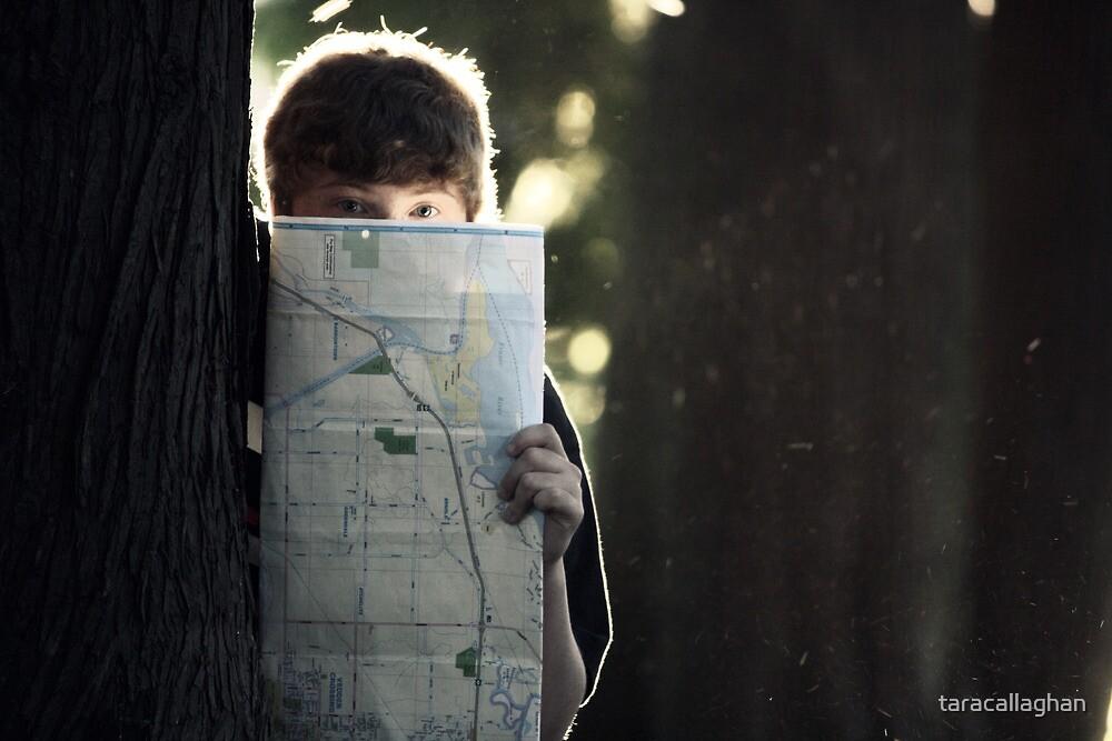 maps 3 by taracallaghan