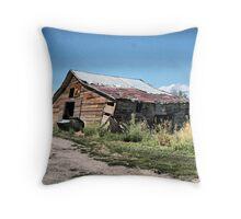 This Ole Barn Throw Pillow
