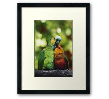 Parrothood Framed Print