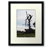 Desolate - Mornington Framed Print