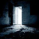 Leading Door by Rameez Khawaja
