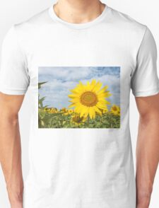 Sunflowers in a field T-Shirt