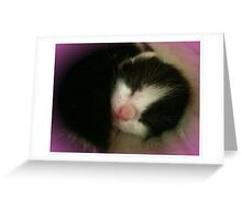 Pink Nose Greeting Card