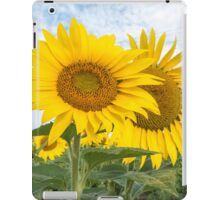 Field of yellow sunflowers iPad Case/Skin