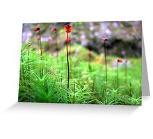 Lady Bugs on Stilts Greeting Card