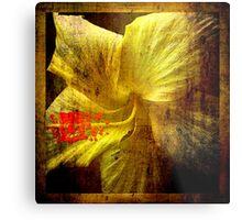Manipulated Hibiscus. Metal Print