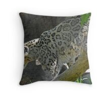 """Pretty In Pink, Beautiful """"As Is"""" Throw Pillow"""