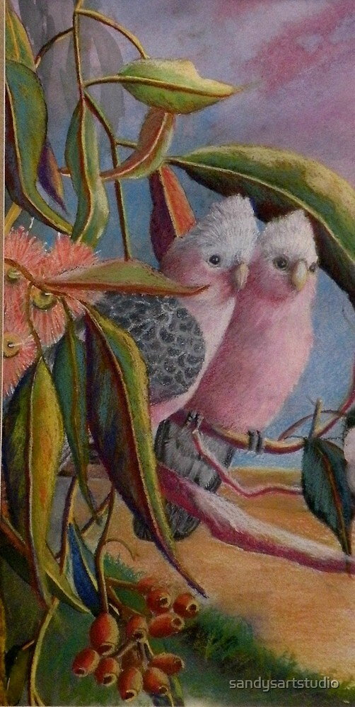 Amongst the Gum Nuts  Sold by Sandra  Sengstock-Miller