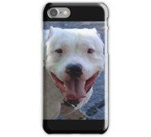 Pit Bull Pretty iPhone Case/Skin