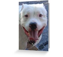 Pit Bull Pretty Greeting Card