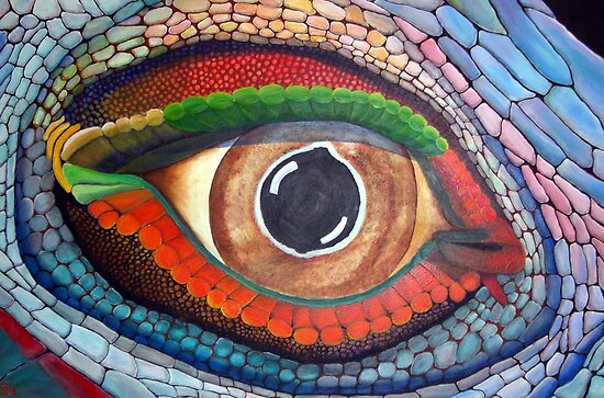 Lizard's Eye by Pauline Jones