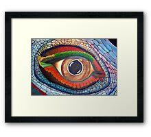 Lizard's Eye Framed Print