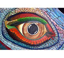 Lizard's Eye Photographic Print