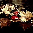 On Golden Pond by Berns