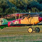 TVAL Albatros D.Va reproduction ZK-TGY lifts her tail by Colin Smedley