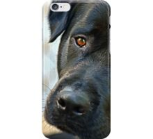 Conversations with my Dog iPhone Case/Skin