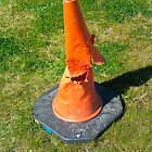 Death of a traffic cone.... by ShaunaDZ