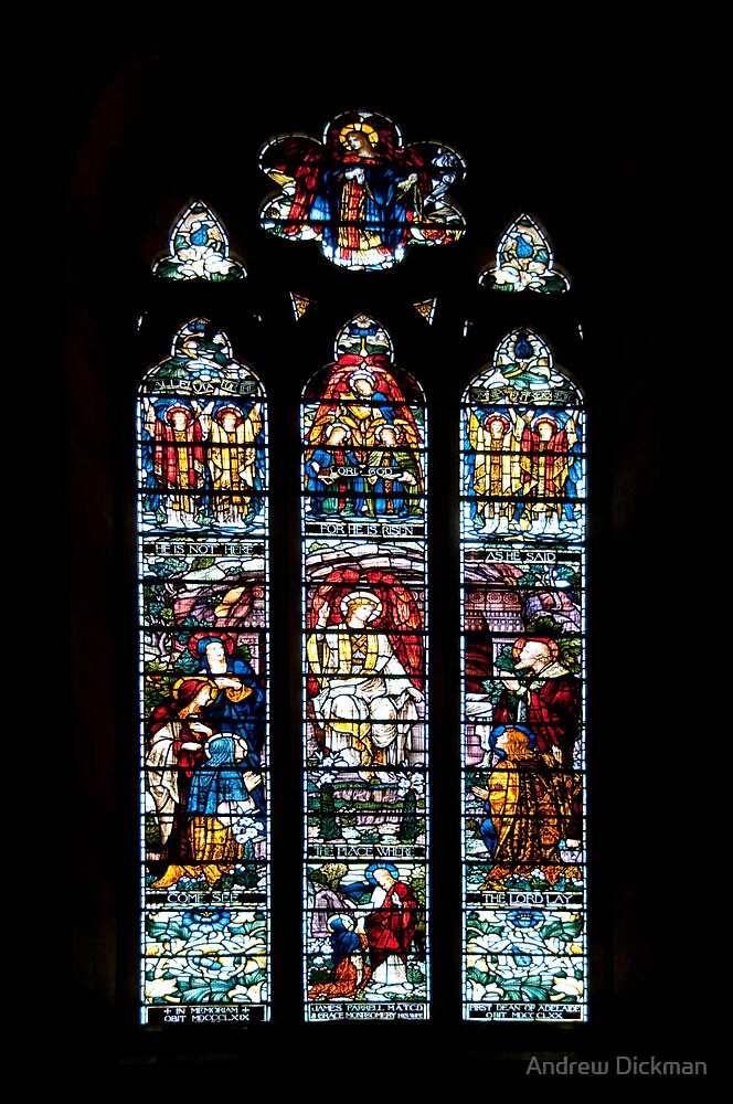 Stained Glass by Andrew Dickman