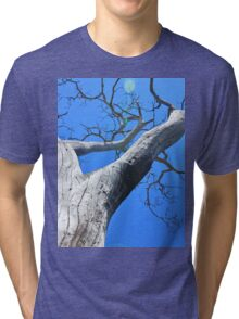 Tree of Light - Nature Background of Age Tri-blend T-Shirt