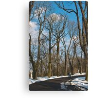 Spring Parkway Canvas Print