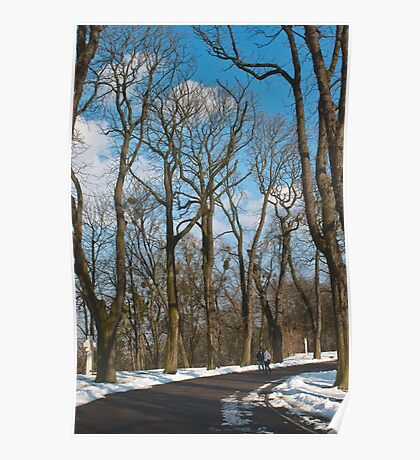 Spring Parkway Poster