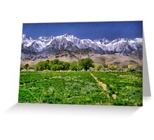 Field before the Mountains Greeting Card