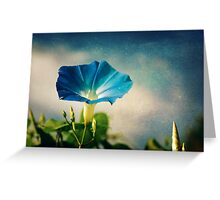 Hello Morning Glory Greeting Card