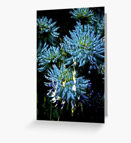 White and Blue Splatters Greeting Card